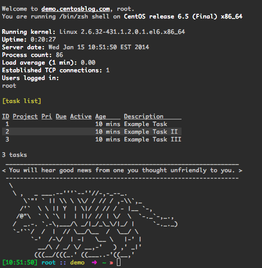 shwelcome: a BASH welcome script for your CentOS Linux server